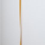 """""""Isolante"""", 2011, metal pintado e prego, 157x5x5,5 cm"""