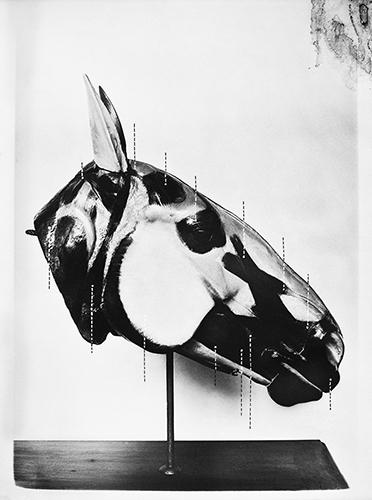 """""""La Tête du Cheval"""" [Cabeça de Cavalo], 2012"""
