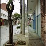 matemática rapida  - nova calçada com sarjeta, postes de luz, canteiros de plantas e mudas árvores instalados sobre calçada existente, 2006. foto de Daniel Steegmann