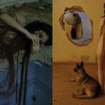 """Bicho Geográfico"", 2010, vídeo"