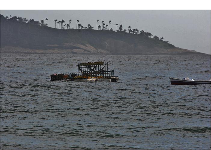 """Casa de Praia / Travessia Maré-Arpoador"", 2012, Projeto Travessia Maré - Arpoador, co-autor Luis Bispo, foto de Marcio Arqueiro"