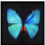 """""""Metamorfose 2"""", 2012, caixa de madeira, acrílico, fotografia e lâmpadas fluorescentes, 80 x 80 x 18 cm"""