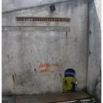 """""""Deixe-me só"""", 2010, graffiti em casa abandonada em São Paulo, site specific"""