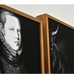 """""""Estudo para inventário, 2013, fotografias em papel algodão e acetato, placas de acrílico e estante de ferro, 400x200 cm (aprox.)"""