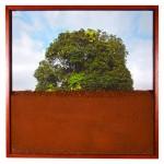 """""""Espaço Confinado"""", 2013, fotografia, impressão de tinta mineral em papel de algodão e terra, 45x45 cm"""