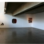 """""""O Descuido"""" (detalhe), Exposição """"O Descuido, Vira-latas, Fuleragem e Bundas"""", 2011, Galeria do Espaço Piloto – UnB, curadoria aberta: Bia Medeiros e Moisés Crivelaro"""