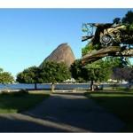 """""""After: Nature"""", 2008, instalação sonora urbana, tweeters, cabos e sistema de som. Local: Recanto dos Animais, Aterro do Flamengo, RJ. Vencedor do Prêmio Interferências Urbanas, RJ, 2008."""