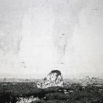 Untitled, 2014, HD vídeo,13' 22'' loop