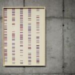 """""""Coincidências"""" da série """"Autorretratos Estatísticos"""", 2012, jato de tinta sobre papel de algodão + livro de artista, 1,15x0,82 m"""