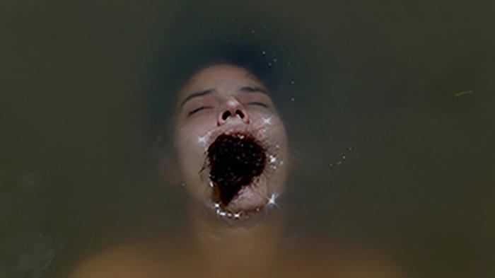 """""""Eko Kanhy"""", 2012, performance direcionada para fotografia, dimensões variáveis"""