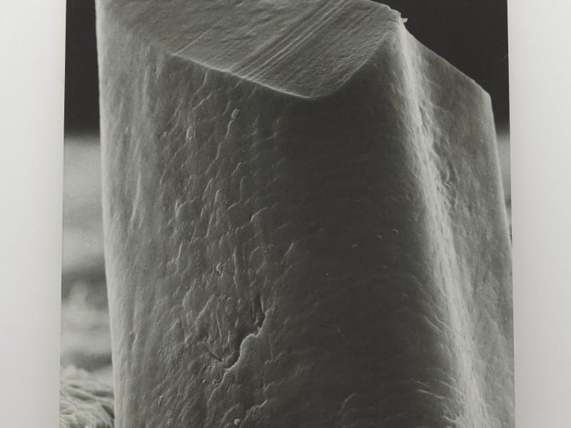 Marcius Galan_Monumento de um dia_2013_impressão em papel de algodão_206...