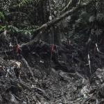 """""""Em Profundidade (campos minados) #03"""" - Série Colômbia, 2015, Narino, Antioquia, Colômbia, 7 impressões de grande escala"""