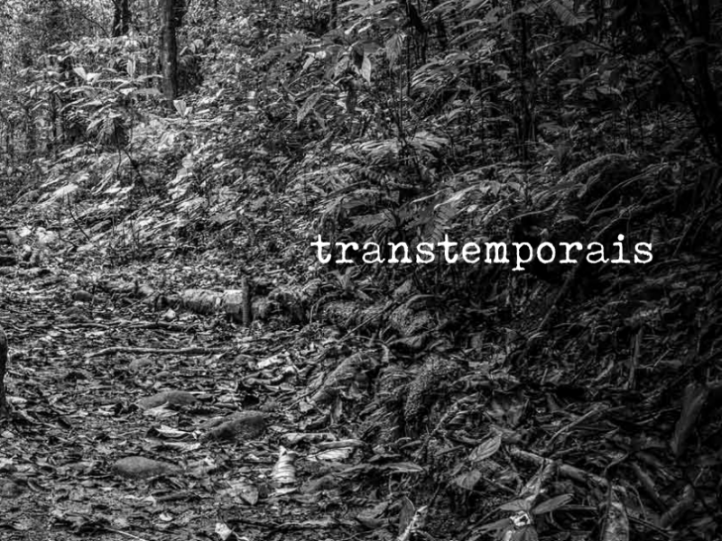 Transtemporais