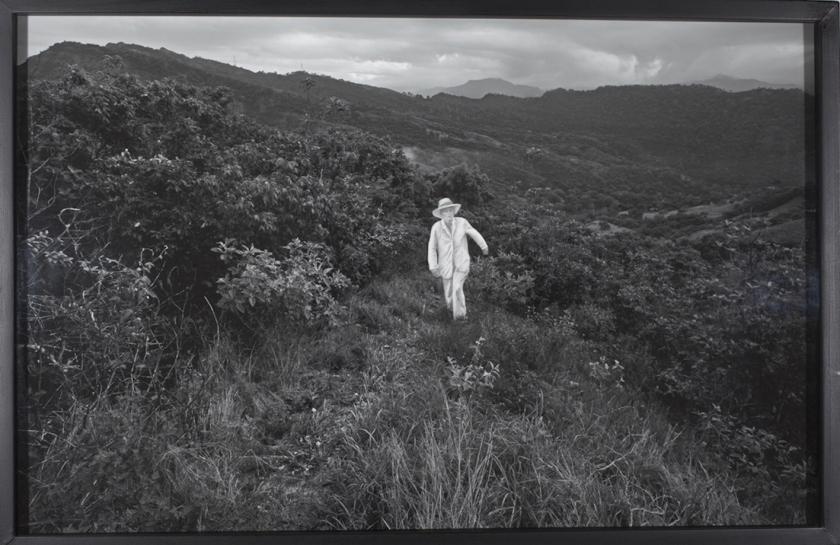 """Uma das imagens da série """"Flora Negra"""", de Pedro Motta, resultado de uma residência do artista em Honda, Colômbia que integra a exposição"""